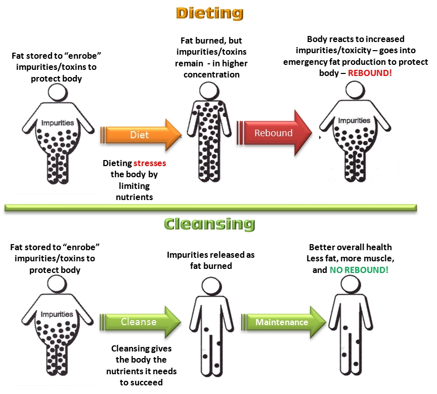 dieting-vs-cleansing-web